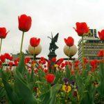 Споменик косовским јунацима